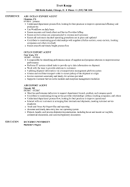 Resume Sample Word Export Agent Resume Samples Velvet Jobs 76