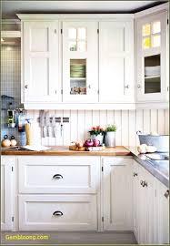 cabinet door pulls unique incredible kitchen cabinet drawer pulls rajasweetshouston