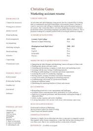 no work experience marketing assistant resume