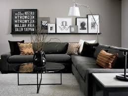 great shiny grey living room ideas has gray living room ideas