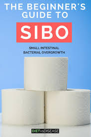 Sibo Diet Chart The Beginners Guide To Sibo Antibiotics And Diet