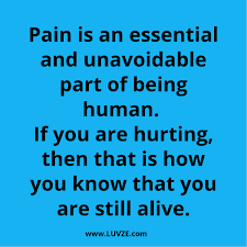 Being Hurt Qoutes 24 Being Hurt Quotes Messages Sayings With Beautiful Images 23