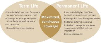 Voluntary Life Insurance Plans For Employers L Guardian Anytime Interesting Level Term Life Insurance Quote