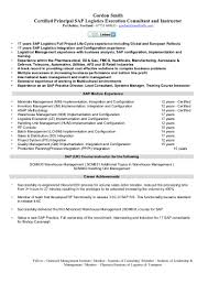 Sap Sd Implementation Resume Resume For Study