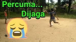 Video Lucu Jawa Status Wa 30 Detik