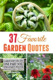 Garden Quotes Impressive 48 Favorite Garden Quotes Memes And Quirky Expressions Empress