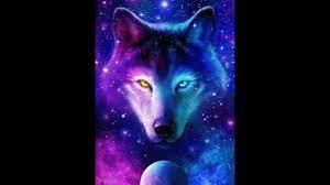 Wolf Wallpaper Night Sky - Night Wolf ...