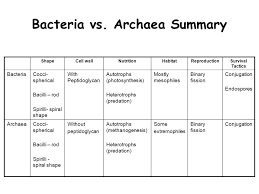 american revolution and french revolution venn diagram archaea vs bacteria venn diagram wiring diagram