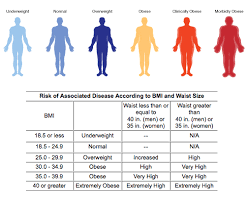 Bmi Underweight Overweight Chart Bmi Are You Normal Underweight Or Overweight Qilahzakiah108