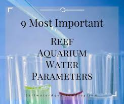 Saltwater Test Kit Chart 9 Most Important Reef Tank Parameters Test These Ideal