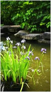 Small Picture Free DIY Backyard Pond and Water Garden Plans and Building Guides