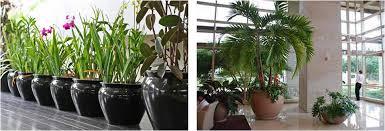 interior landscaping office. Slider Image Interior Landscaping Office