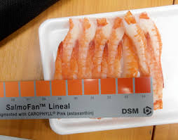 Salmofan Color Chart Summer 2016 Dni Group Sashimi Grade Seafood Authentic