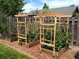 Small Picture Trellis for Raspberries by Lboy LumberJockscom woodworking