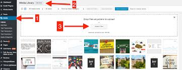 how to add an ads txt file to wordpress screenshot