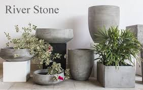 pots outdoor plants