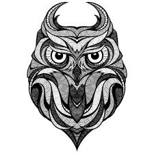Download Owl Illustrator Drawing Illustration Tattoo Download Hd Png