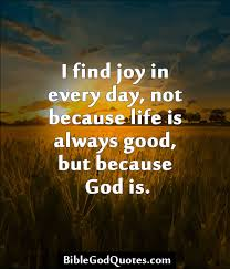 Christian Inspirational Quotes About Life Adorable I find joy in every day not because life is always good but
