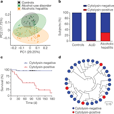 Nature Chart X And Y Bacteriophage Targeting Of Gut Bacterium Attenuates