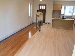 cat urine stain on wood floor urine stains on hardwood floors hardwood exemplary cat urine stain