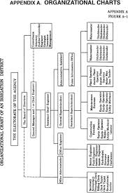 Cms Org Chart Organizational Charts Management Operation And
