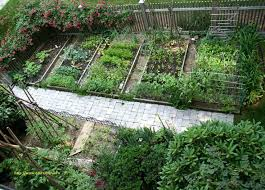 florida vegetable gardening. Vegetable Gardening In Florida With Awesome 267 Best Ve Able Images On Pinterest D