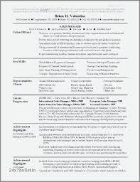 sales professional resume examples best resume format for sales professionals resume sample
