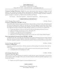Best Professional Resume Examples Inspiration Resume Examples Templates Very Best Professional Of Example 48