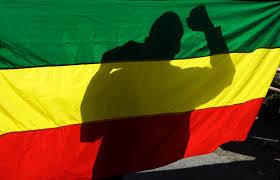 Image result for ethiopian flag