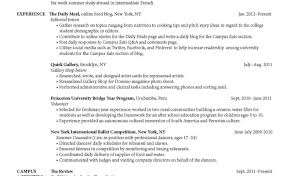 Welders Resume Resume Oilfield Resume Objective Examples