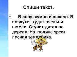 Презентация по рускому языку Контрольное списывание класс Спиши текст В лесу шумно и весело В воздухе гудят пчелы и шмели