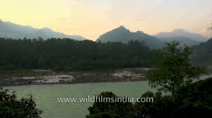 Aalia On The Ganges Hotel The Glass House On The Ganges By Neemrana Youtube