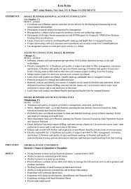 Business Consultant Job Description Resume Small Business Consultant Resume Samples Velvet Jobs 16
