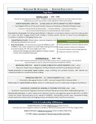 Innovative Ideas Executive Resume Samples 2017 Top Executive Resume