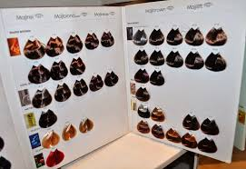 L Oreal Professionnel Colour Chart Healthy Hair Color At Regines Salon By Loreal