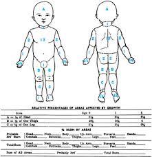 Burns Children And Infants Lund Browder Chart Lund Chart