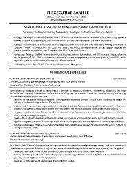 It Director Resume 2 It Example Techtrontechnologies Com