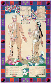 Acupuncture Chart Poster Illustrated Acupuncture Chart Michael Spatuzzi L Ac
