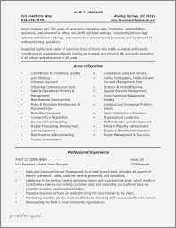 30 New Sample Resume For Sales Associate Cashier Jonahfeingold Com