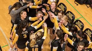 Ava Nelson - Women's Volleyball - Pacific Lutheran University Athletics