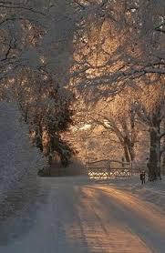 <b>Everlasting Love</b>   Holidays   <b>Winter</b> beauty, <b>Winter</b> scenery, <b>Winter</b> ...