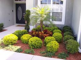 15 best front yard landscaping ideas