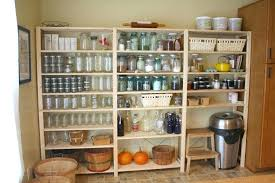 decorating with plants apartment for s meaning in tamil organized larder from the blog drop