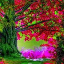 10 latest spring trees wallpaper desktop full hd 1080p for pc desktop 2018 free desktop