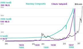 Bitcoin Fever This Bubble Will Burst Or Not