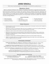 Sample Combination Resume For Stay At Home Mom Awesome Sample