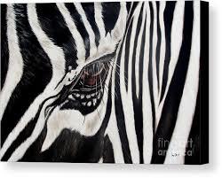 zebra canvas print featuring the painting zebra eye by ilse kleyn