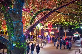 Washington Park Michigan City Christmas Lights 11 Places To See Christmas Lights In Chicago