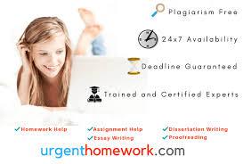 essay homework help online custom paper help essay homework help online