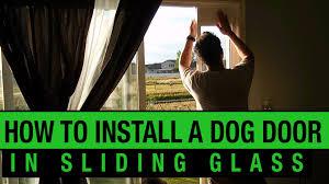 how to install a dog door in a sliding glass door petsafe dog door installation you